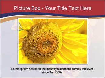 0000075279 PowerPoint Template - Slide 16