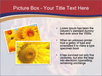 0000075279 PowerPoint Template - Slide 20