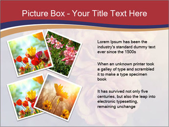 0000075279 PowerPoint Template - Slide 23