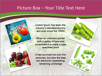 0000075281 PowerPoint Templates - Slide 24