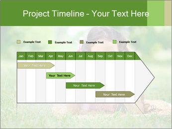 0000075282 PowerPoint Template - Slide 25