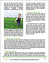 0000075282 Word Templates - Page 4