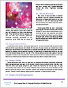 0000075285 Word Template - Page 4