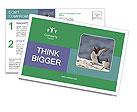 0000075290 Postcard Templates