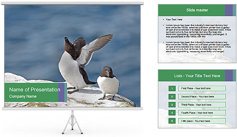 0000075290 PowerPoint Template