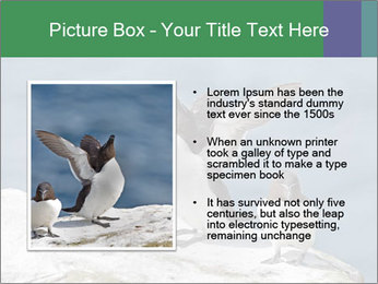 0000075290 PowerPoint Template - Slide 13