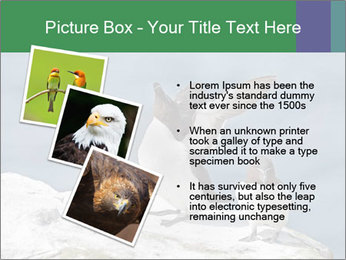 0000075290 PowerPoint Template - Slide 17