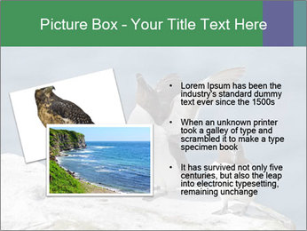 0000075290 PowerPoint Template - Slide 20
