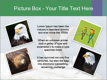 0000075290 PowerPoint Template - Slide 24