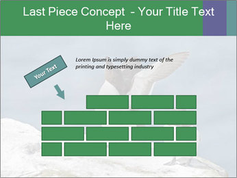 0000075290 PowerPoint Template - Slide 46