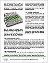 0000075294 Word Template - Page 4