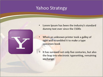 0000075295 PowerPoint Templates - Slide 11
