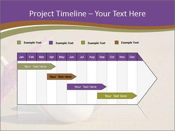 0000075295 PowerPoint Templates - Slide 25