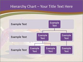 0000075295 PowerPoint Templates - Slide 67