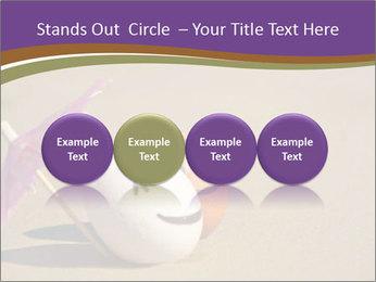 0000075295 PowerPoint Templates - Slide 76