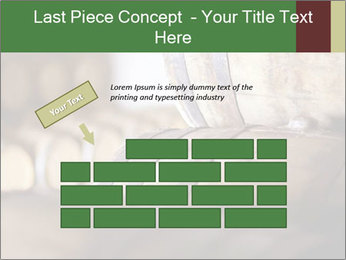 0000075296 PowerPoint Template - Slide 46