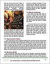 0000075296 Word Templates - Page 4
