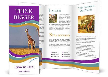 0000075305 Brochure Template