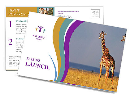 0000075305 Postcard Templates
