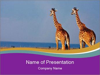 0000075305 PowerPoint Template - Slide 1