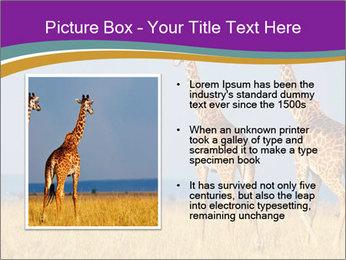 0000075305 PowerPoint Templates - Slide 13