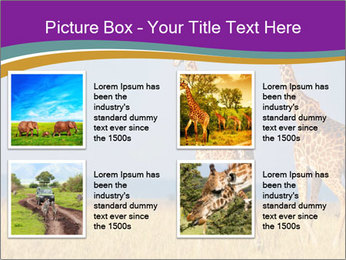 0000075305 PowerPoint Template - Slide 14