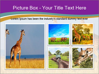 0000075305 PowerPoint Template - Slide 19