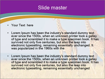 0000075305 PowerPoint Template - Slide 2