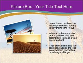 0000075305 PowerPoint Template - Slide 20