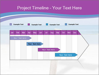 0000075309 PowerPoint Template - Slide 25