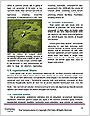 0000075319 Word Template - Page 4
