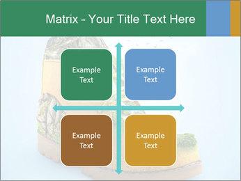 0000075329 PowerPoint Templates - Slide 37