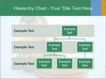 0000075329 PowerPoint Templates - Slide 67