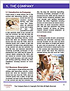 0000075333 Word Templates - Page 3