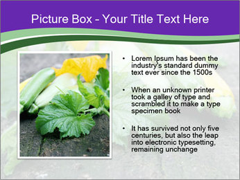 0000075339 PowerPoint Template - Slide 13