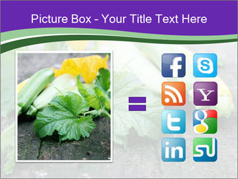 0000075339 PowerPoint Template - Slide 21