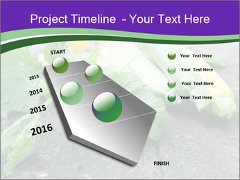 0000075339 PowerPoint Template - Slide 26