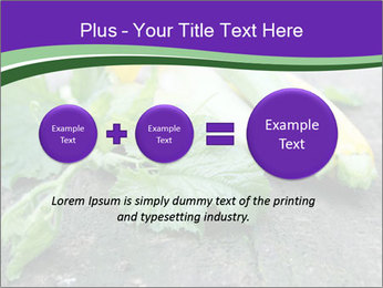 0000075339 PowerPoint Template - Slide 75