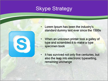 0000075339 PowerPoint Template - Slide 8