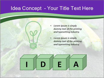 0000075339 PowerPoint Template - Slide 80