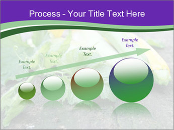0000075339 PowerPoint Template - Slide 87