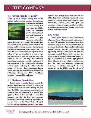 0000075347 Word Template - Page 3