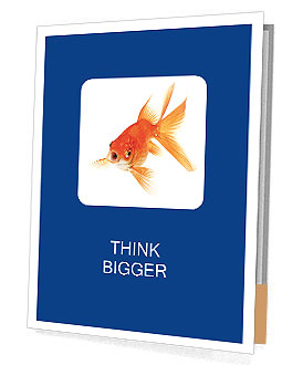 0000075349 Presentation Folder