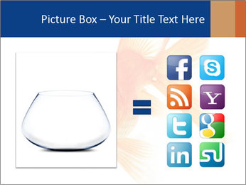 0000075349 PowerPoint Template - Slide 21