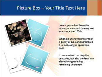 0000075349 PowerPoint Template - Slide 23