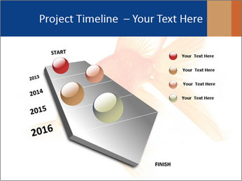 0000075349 PowerPoint Template - Slide 26