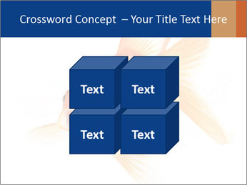 0000075349 PowerPoint Template - Slide 39