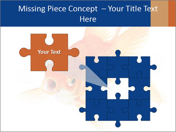 0000075349 PowerPoint Template - Slide 45