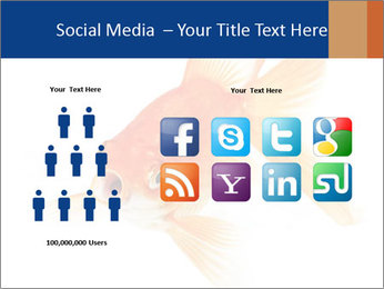 0000075349 PowerPoint Template - Slide 5
