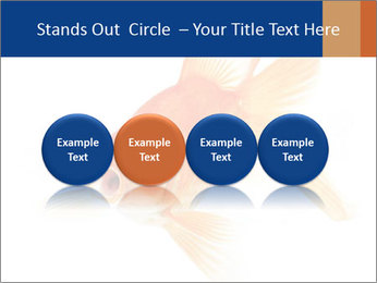 0000075349 PowerPoint Template - Slide 76